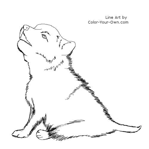 wolf puppies coloring pages for kids and coloring pages on pinterest