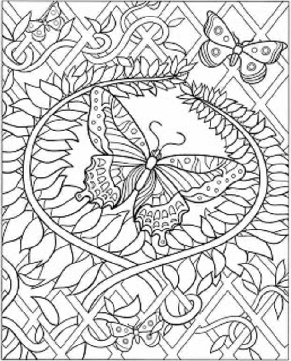 1000 images about coloring free pages for adults on pinterest