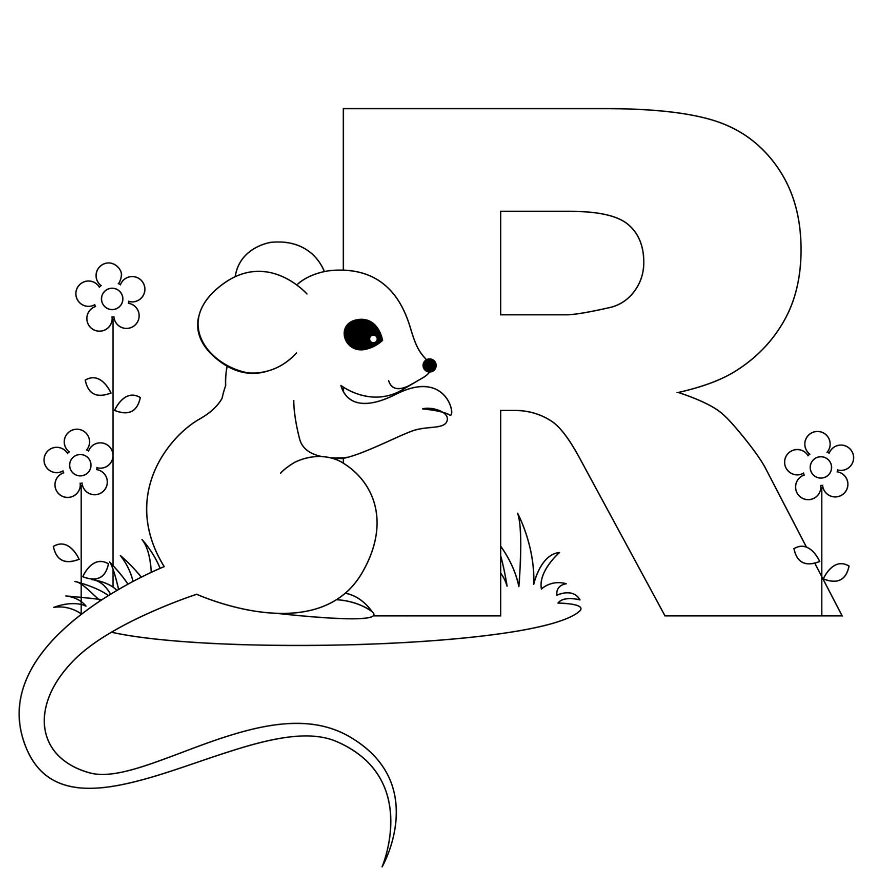 Animal Alphabet Letter R Is For Rat