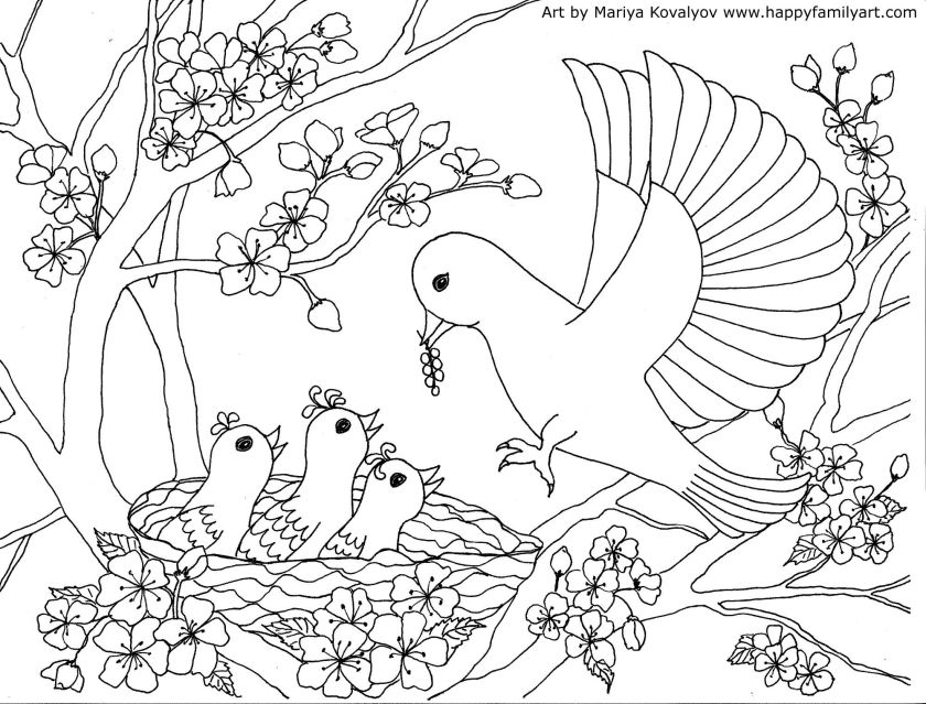 mother bird baby birds coloring pageplease make sure to