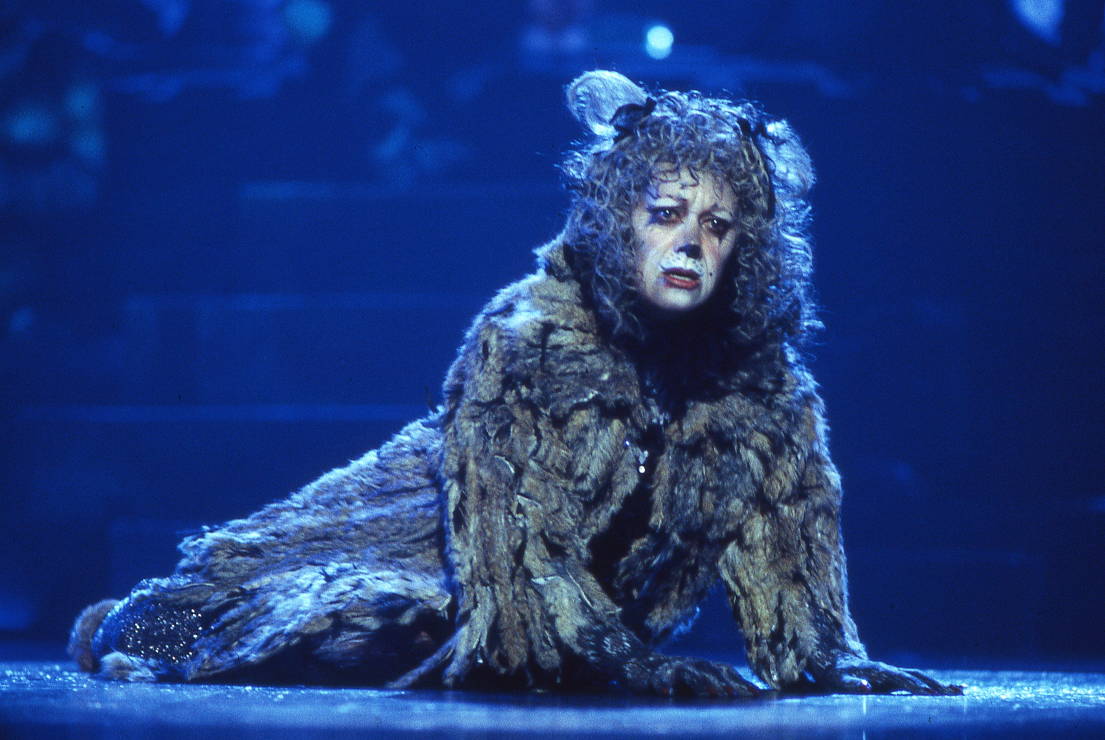 Grizabella Cats Pinterest Cats, Galleries and The o'jays