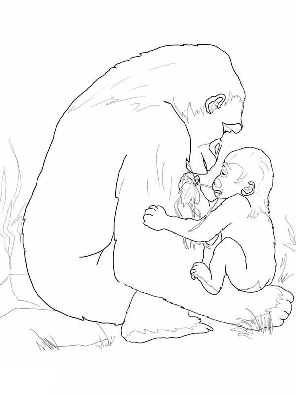 Gorilla Mother Playing With Her Baby Coloring Page