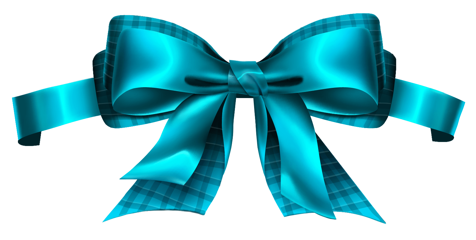 Blue_Checkered_Bow_PNG_Clipart_Picture.png (1538×776