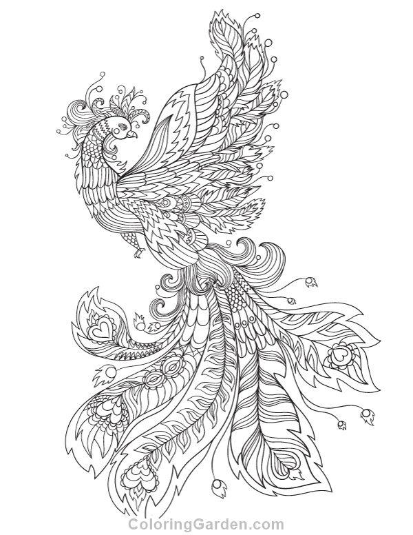 Free printable phoenix adult coloring page. Download it in