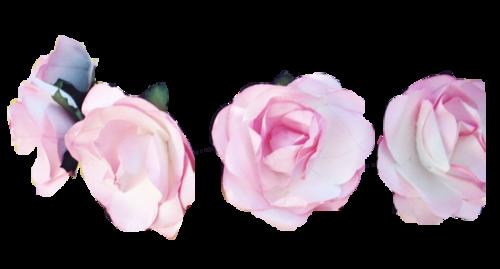 Flower Crown edits ;* Pinterest Flower crowns