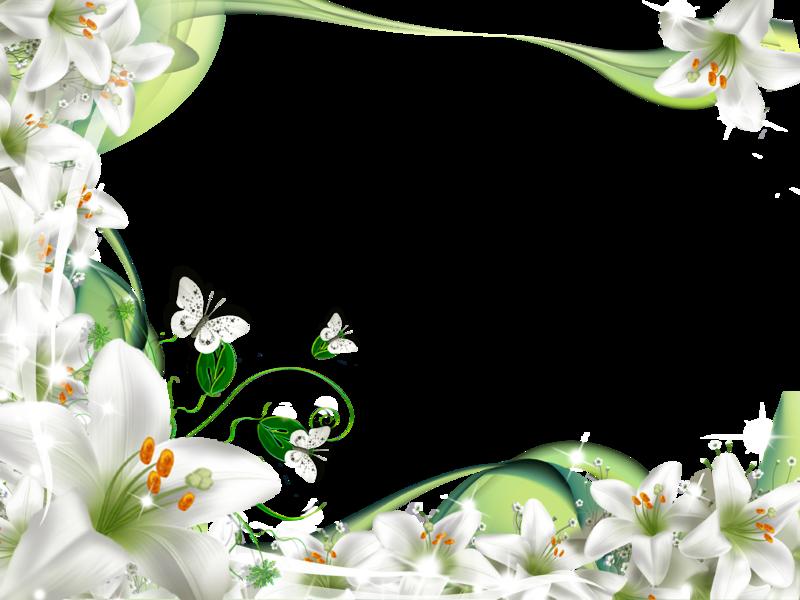 floresblancas.png (800×600) frame Pinterest