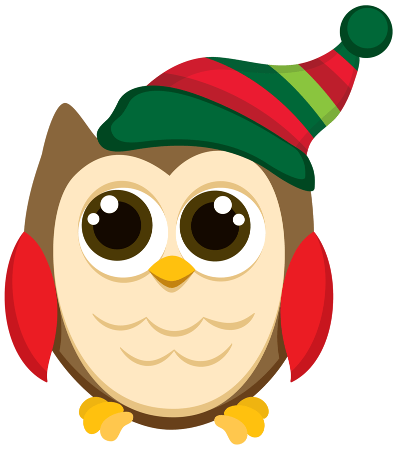 CHRISTMAS OWL CLIP ART Patterns Holiday Themes