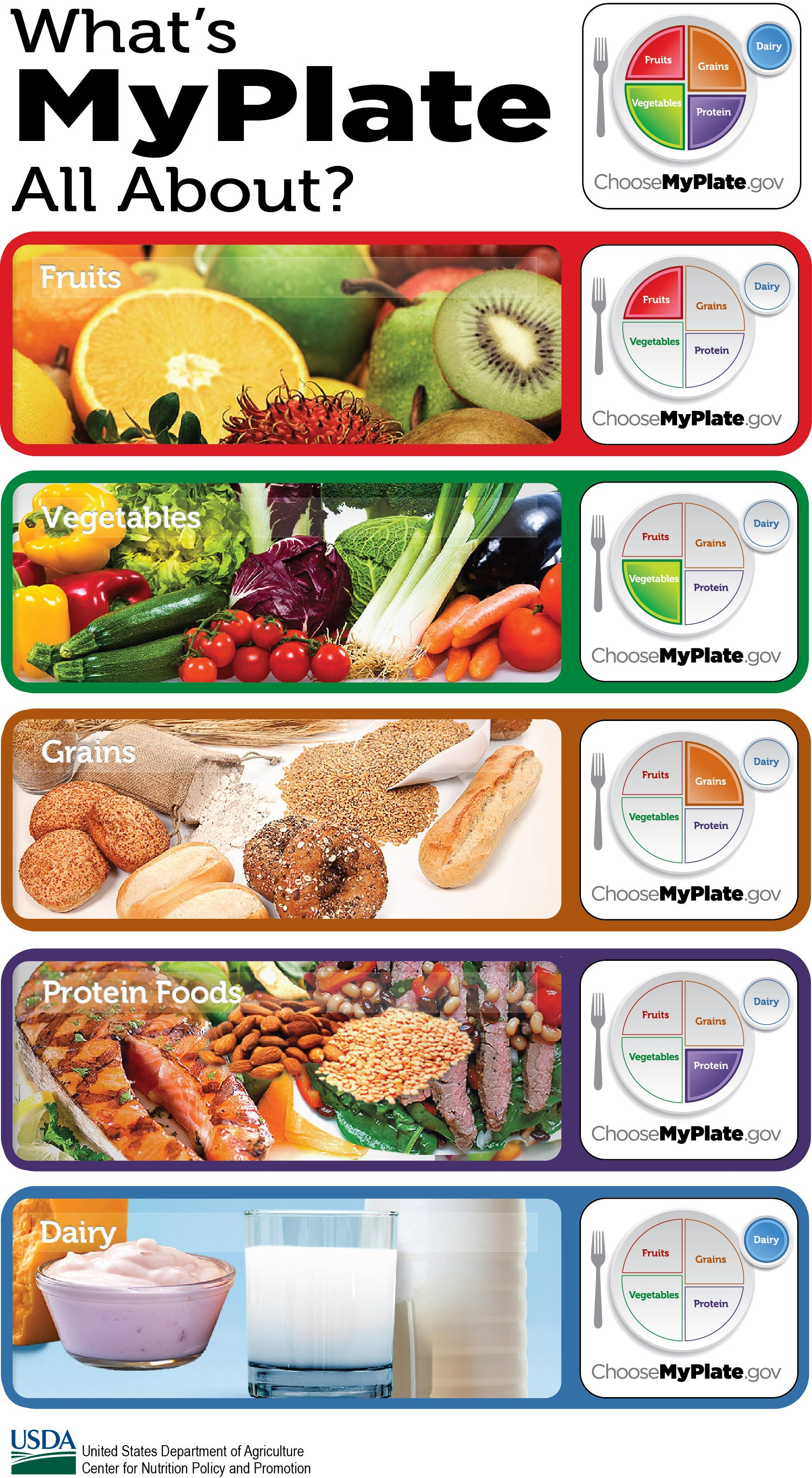 Myplate Teaches The 5 Food Groups Fruits Vegetables