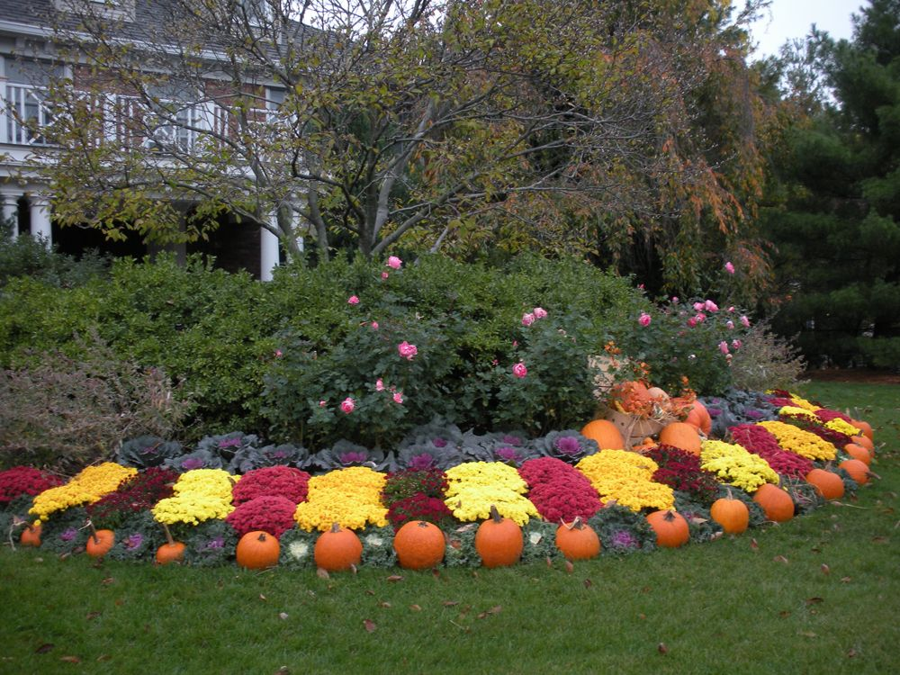 Seasonal landscape display fall/autumn design with