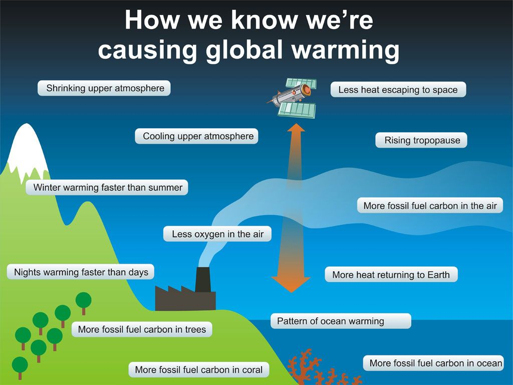 Climate Change And Human Activity