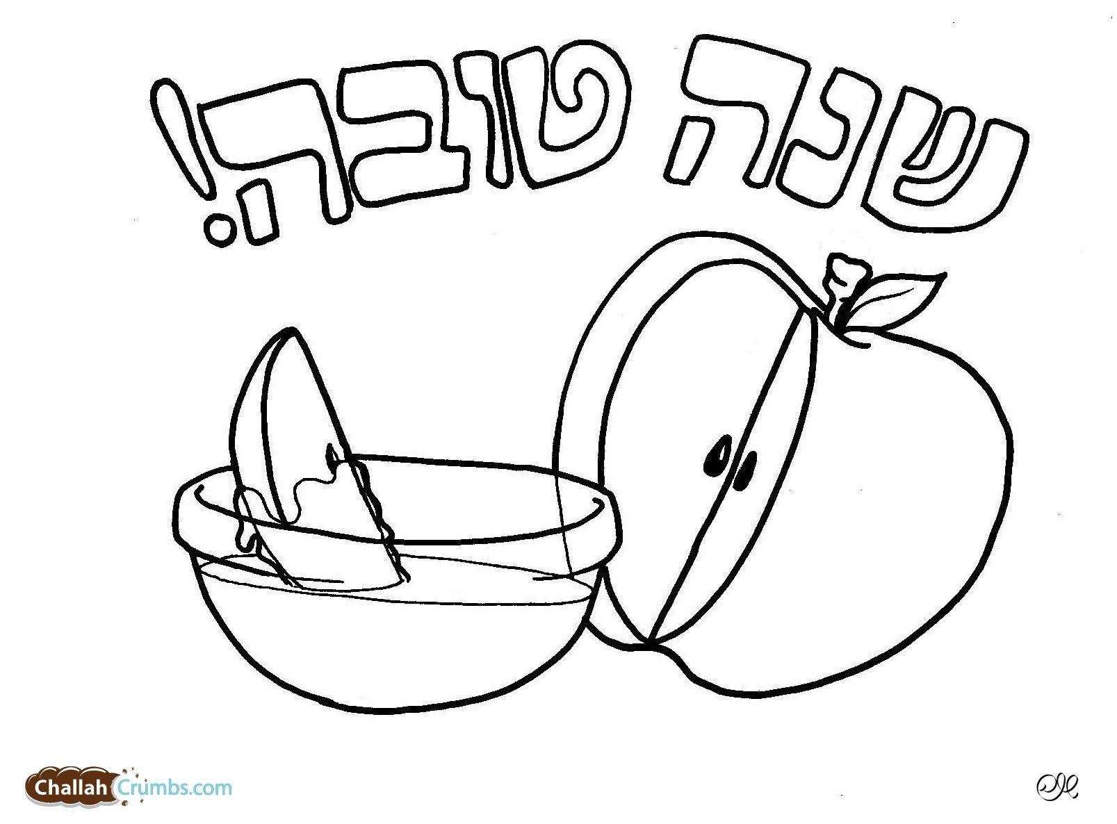 Torah Tots Coloring Pages Rosh Hashana