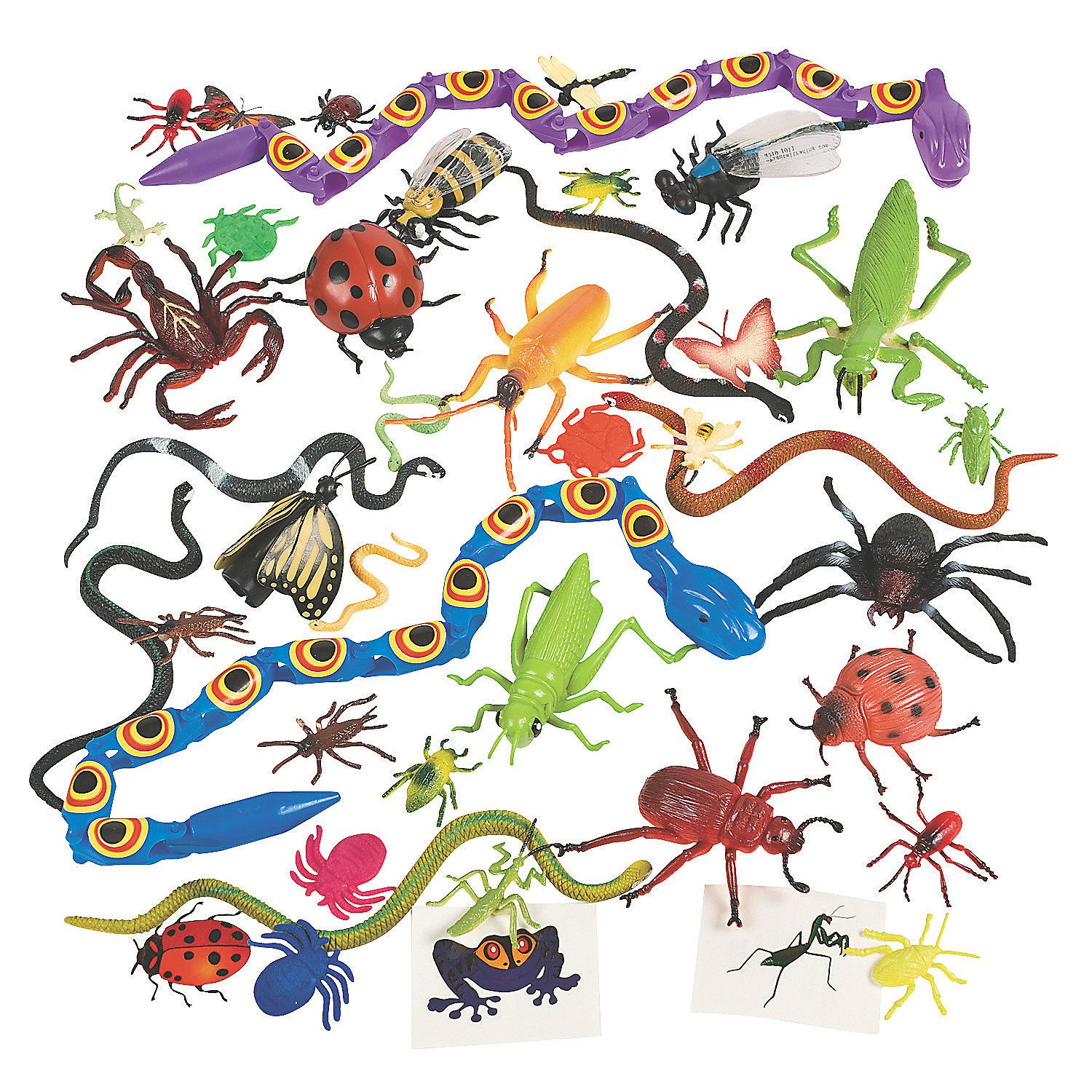 Creepy Crawly Insect Toy Assortment Insects, Creepy and Toy