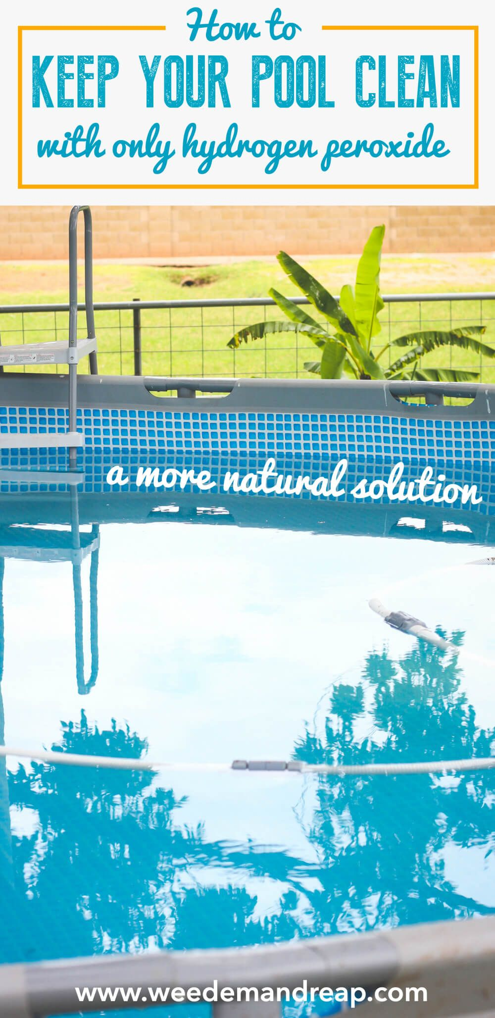 Convert your pool into a natural swimming pool with