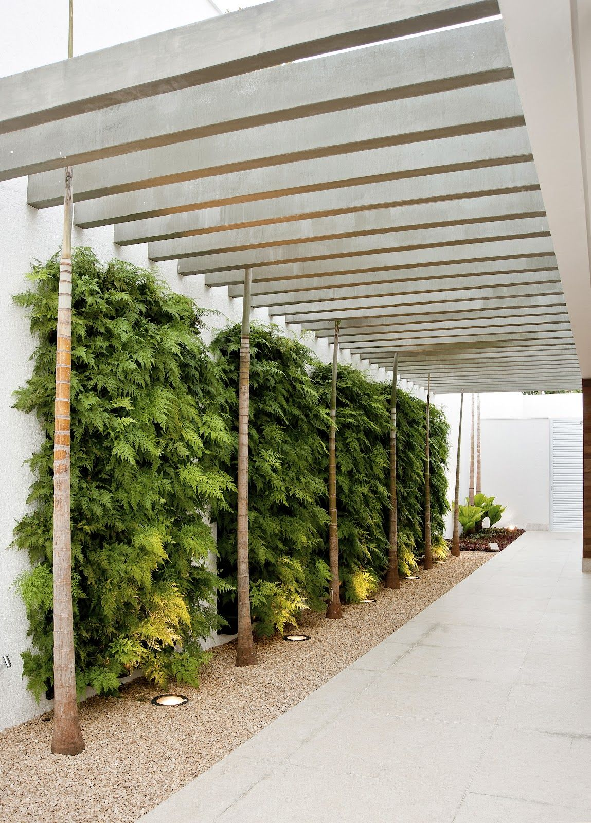 Neat privacy screen for a carport (the plants). Very