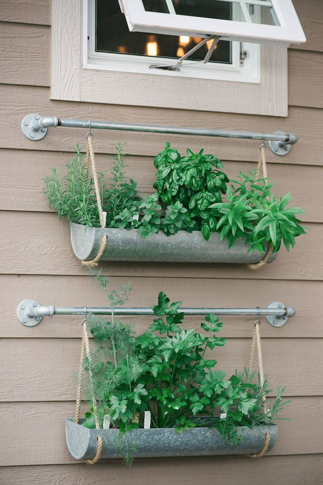 outdoor herb garden Herbs garden, Diy herb garden and Herbs