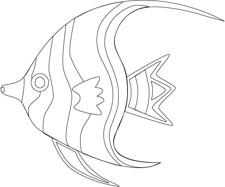1000 images about amphibians amp sea life coloring pages on