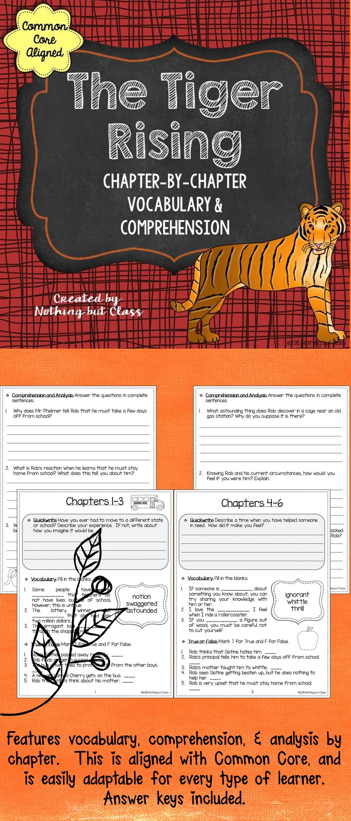 The Tiger Rising Comprehension And Vocabulary By Chapter