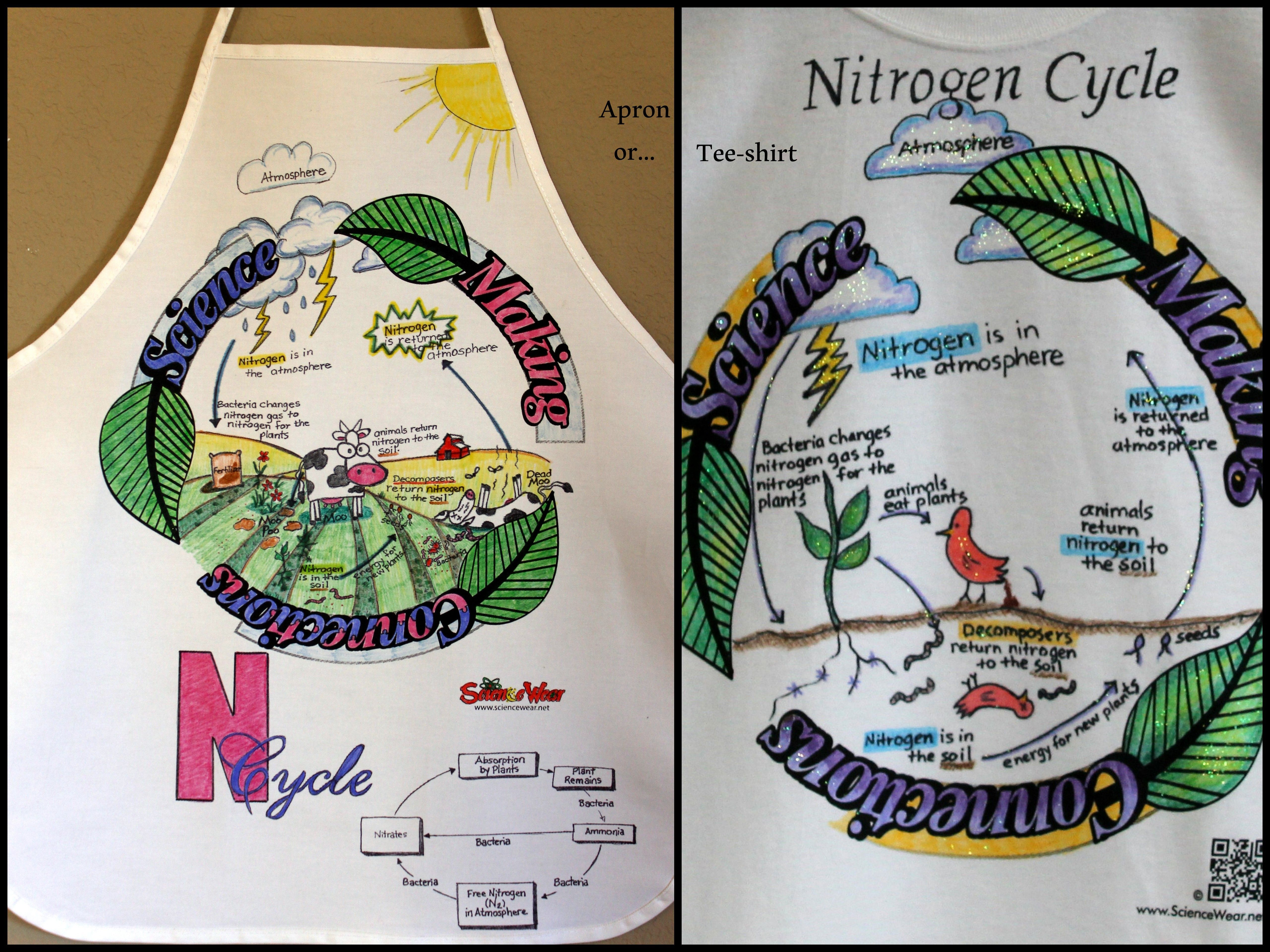 Nitrogen Cycle Project Students Will Love Fun Way To Assess Student Understanding Of The