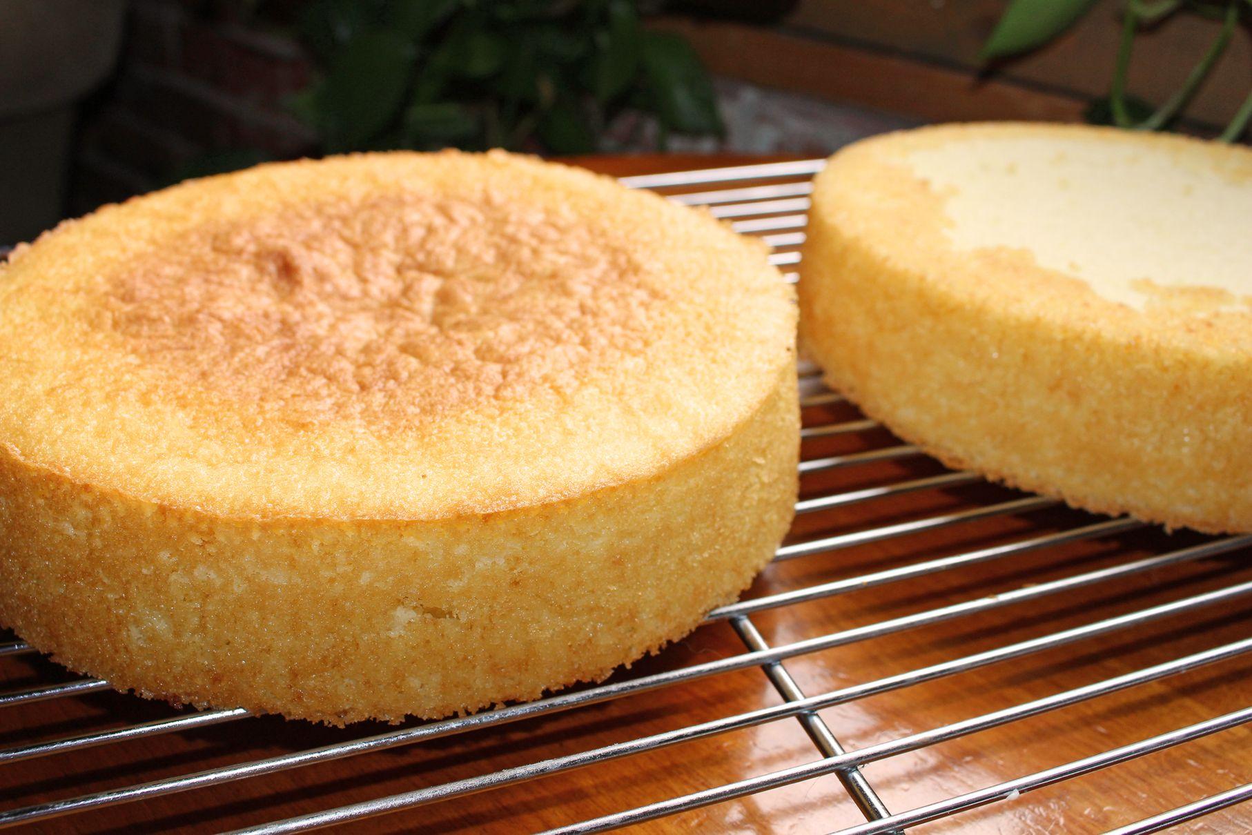 The 25 Best Recipe For Sponge Cake Ideas