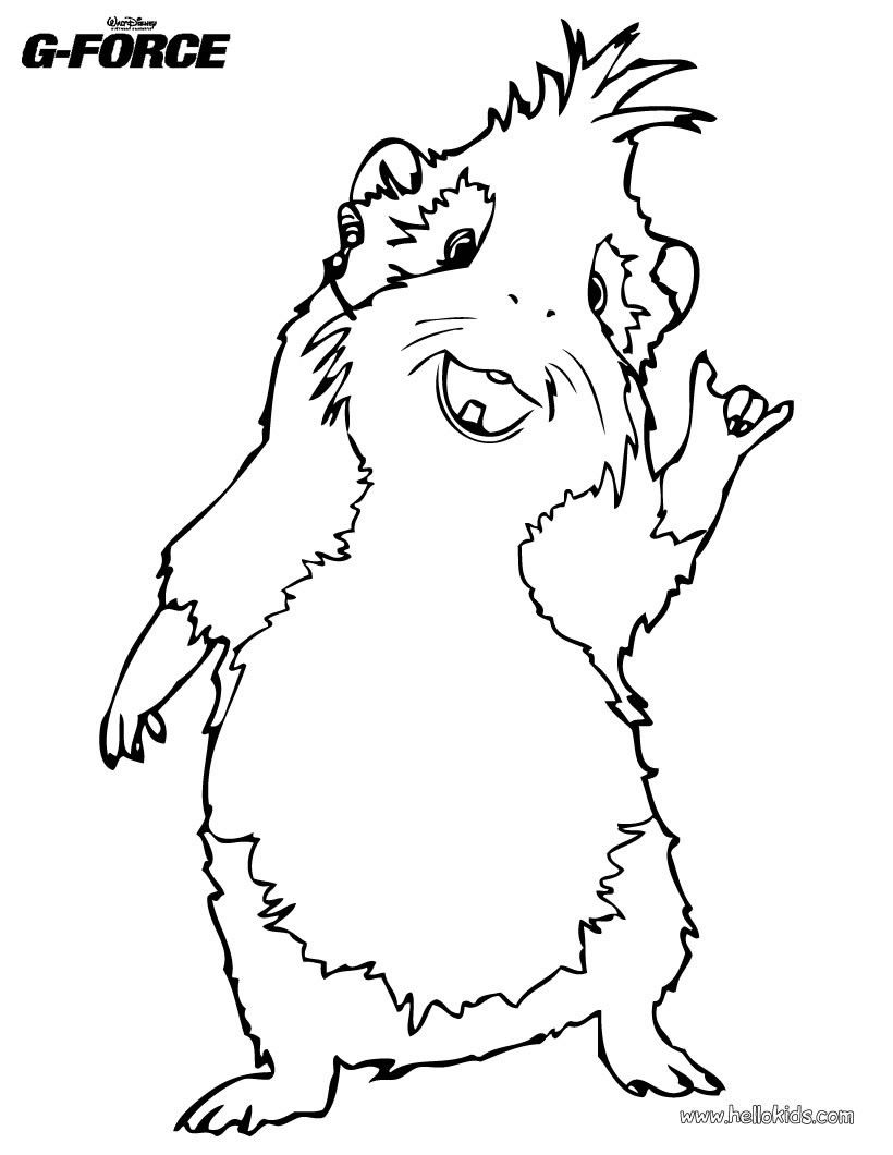 guinea pig coloring pages  coloring pages for adults