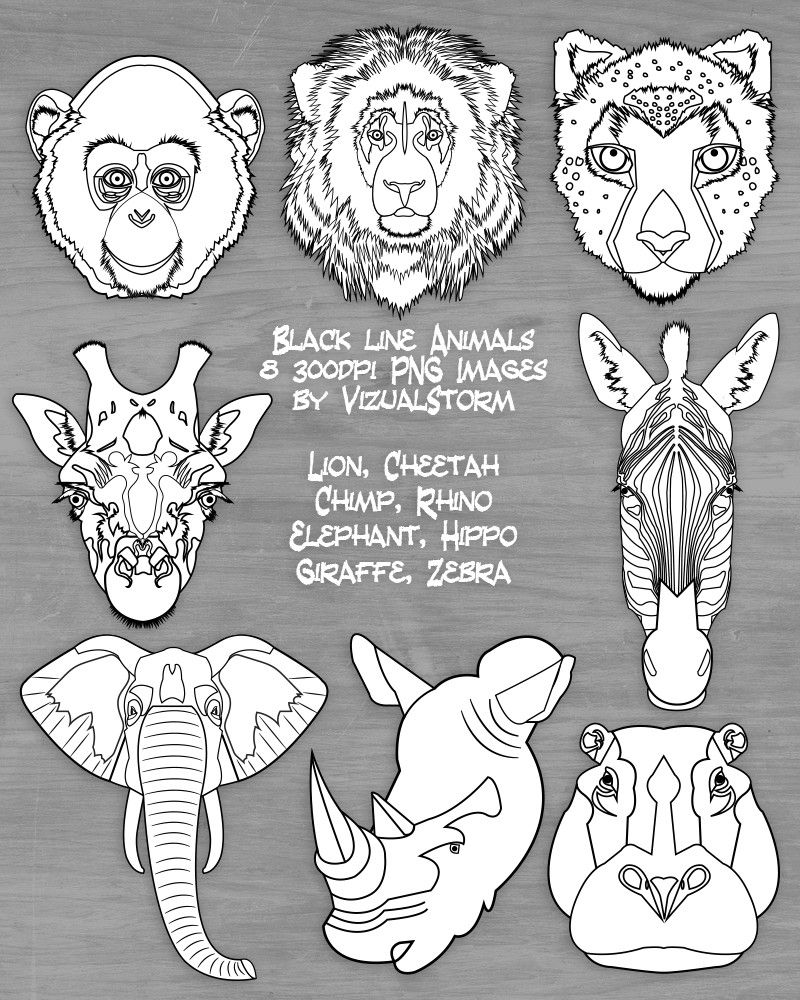 Safari Animal Faces Clipart Black White Jungle Animals Zoo