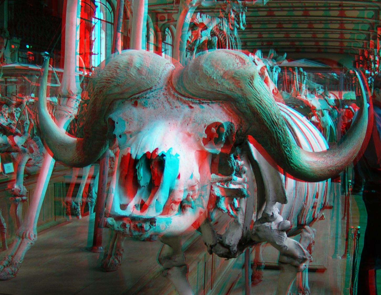 anaglyph photos Google Search COMIN AT YA! / (3D