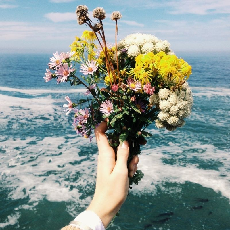 Flowers and the Ocean are the Prettiest! // pretty