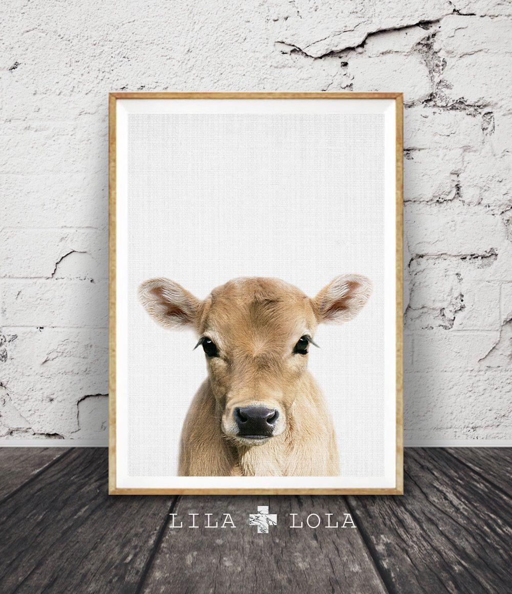 Calf Print, Baby Cow Farm Animal Wall Art, Nursery Decor