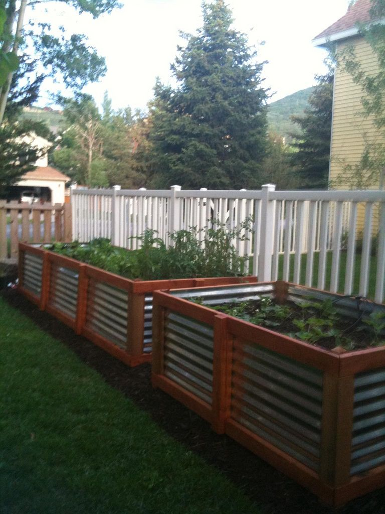 Hmmm...This raised bed may just work for under my living