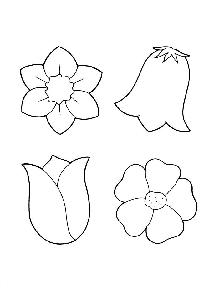 1000 images about flowers on pinterest flower coloring pages