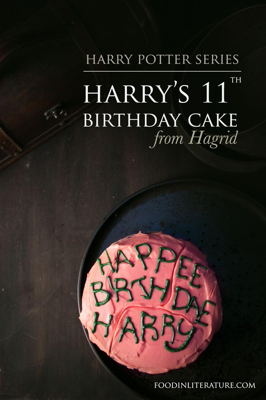 Harry's 11th Birthday Cake from Hagrid Recipe 11th