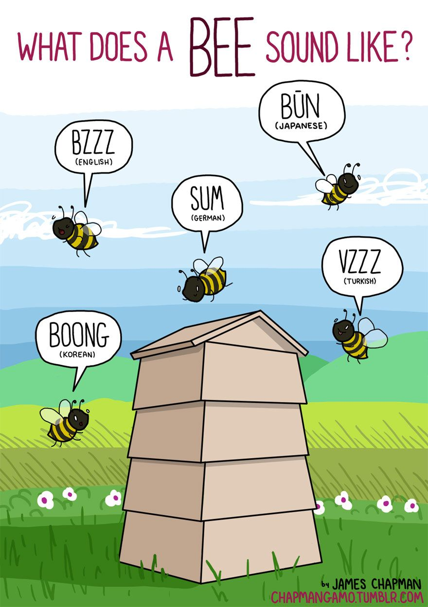 What sounds do animals make in different languages? Bee