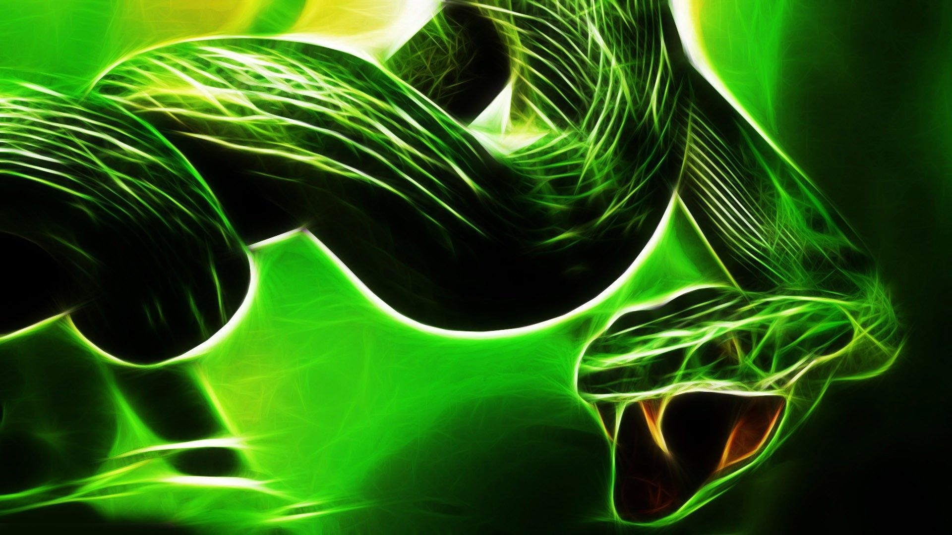 best ideas about snake wallpaper on pinterest nature 2048×1365