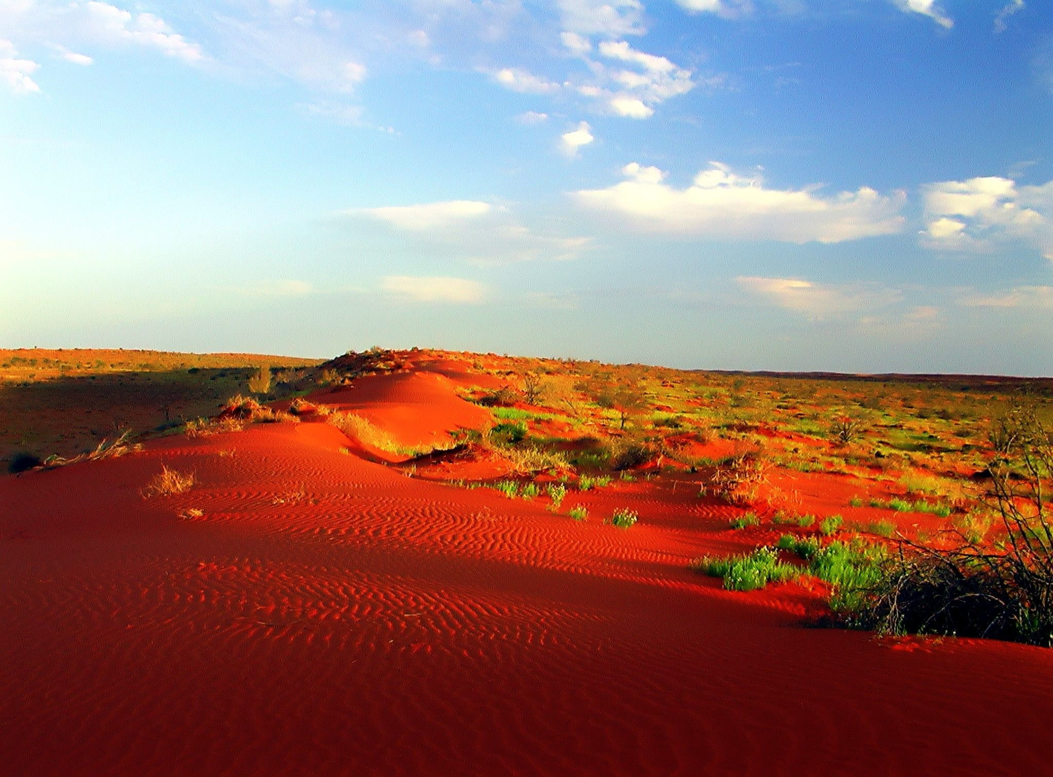 Simpson Desert, Australia Located within the driest region