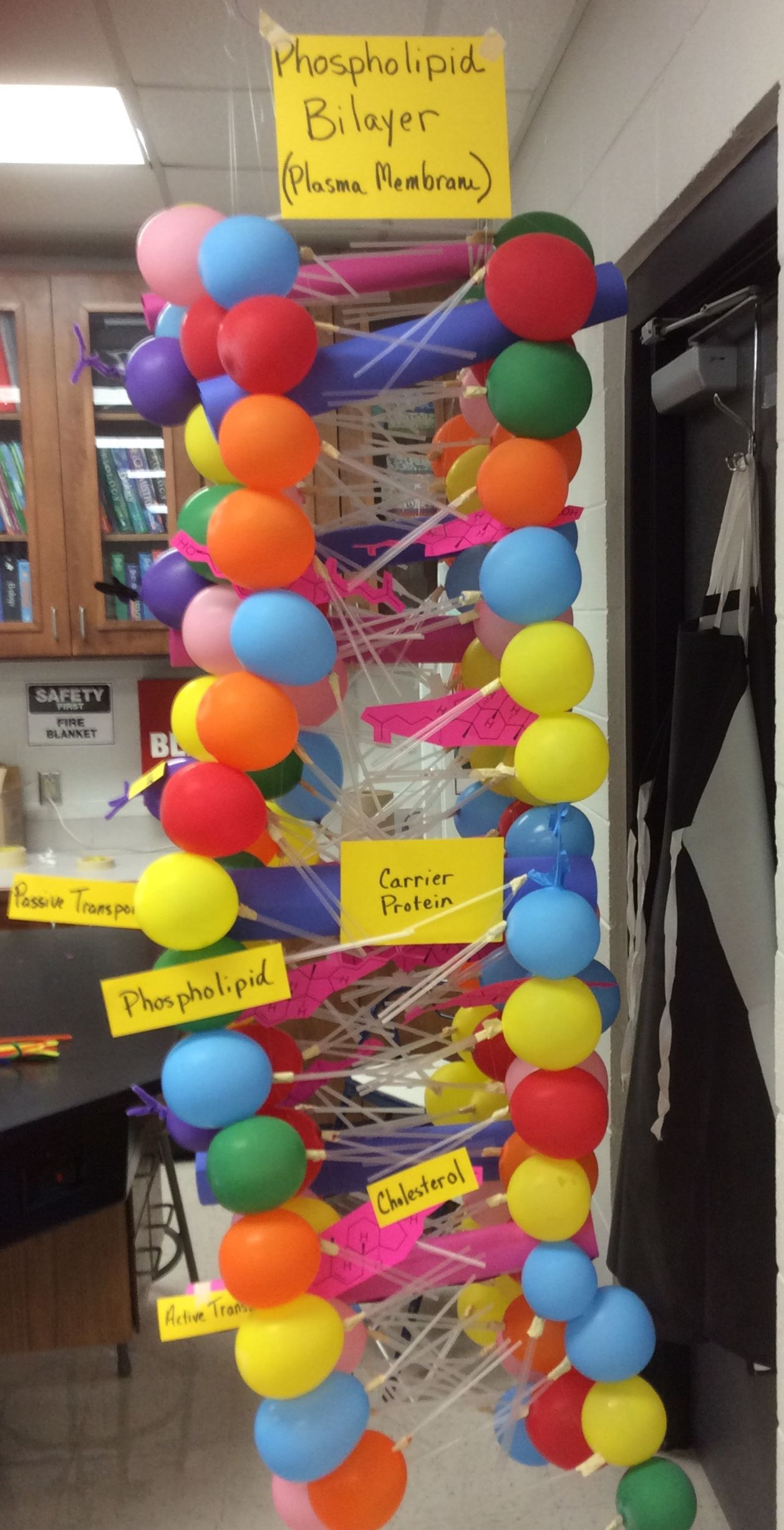 This Is A Class Project We Did To Learn About The Plasma