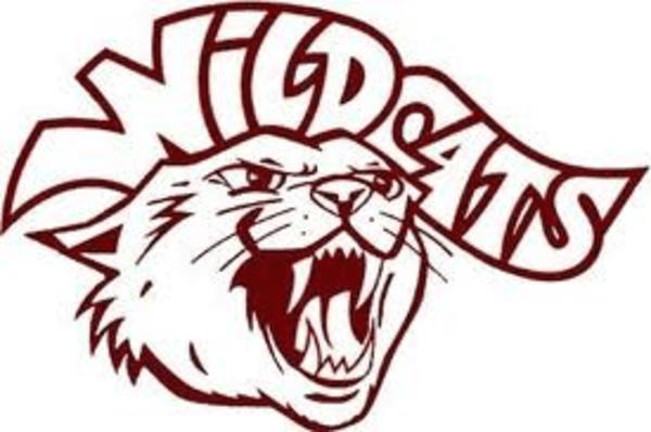 wildcat clipart free Wildcat image vector clip art