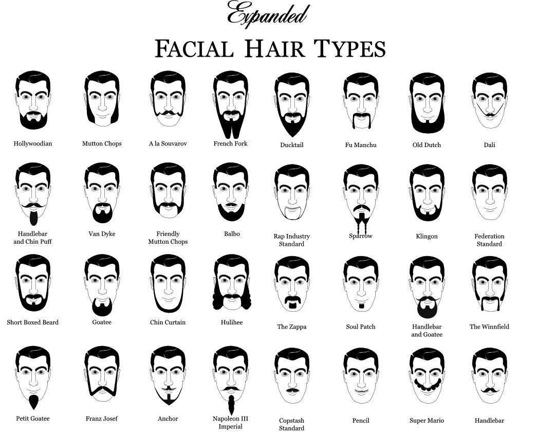 Beard Mustache Facial Hair Types For No Shave November Noshember Movember