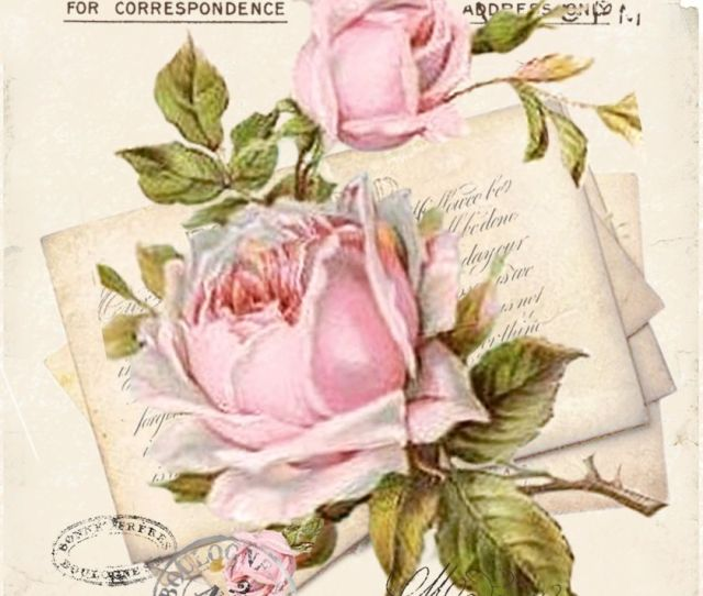 Vintage Postcard Roses P Free To Use