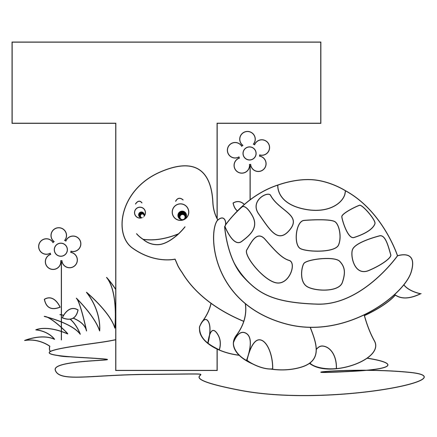 Animal Alphabet Letter T Is For Turtle