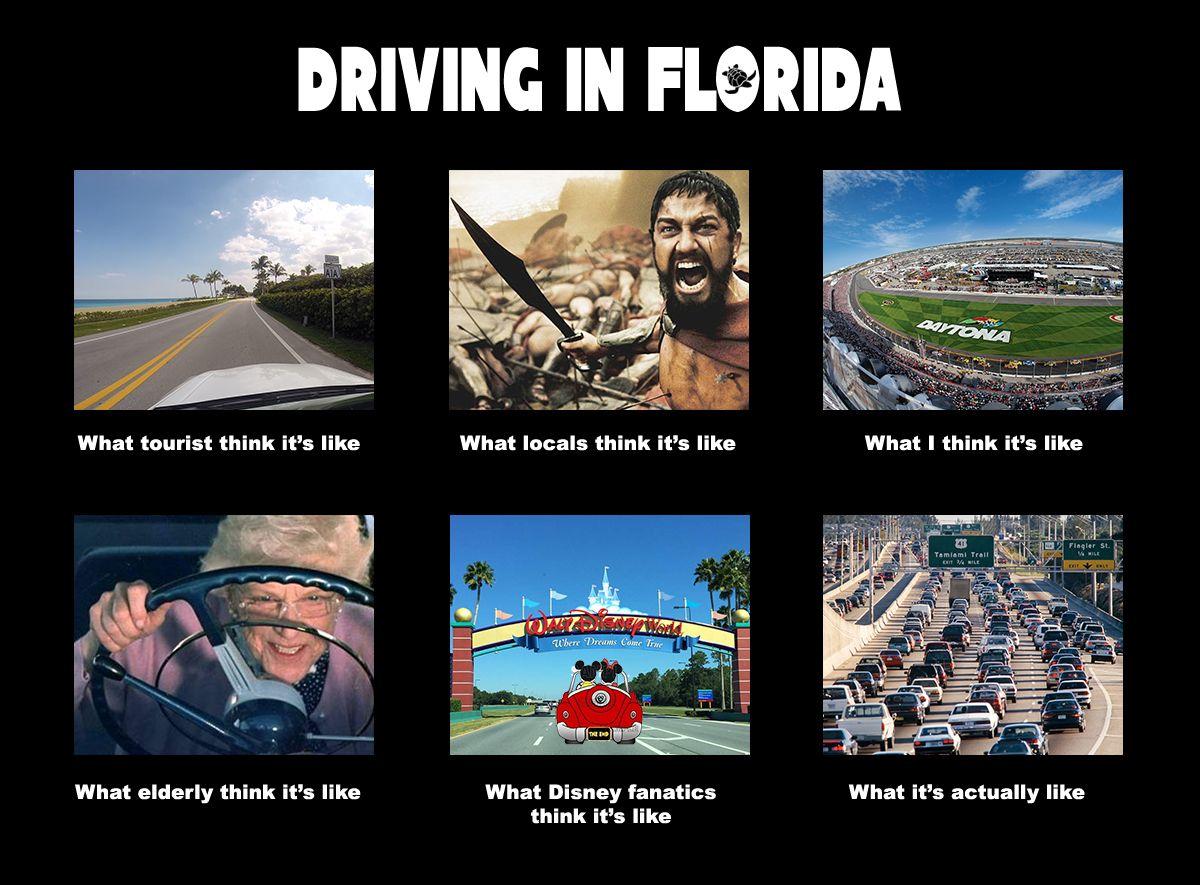 Driving in Florida Memes, Florida meme and Humor