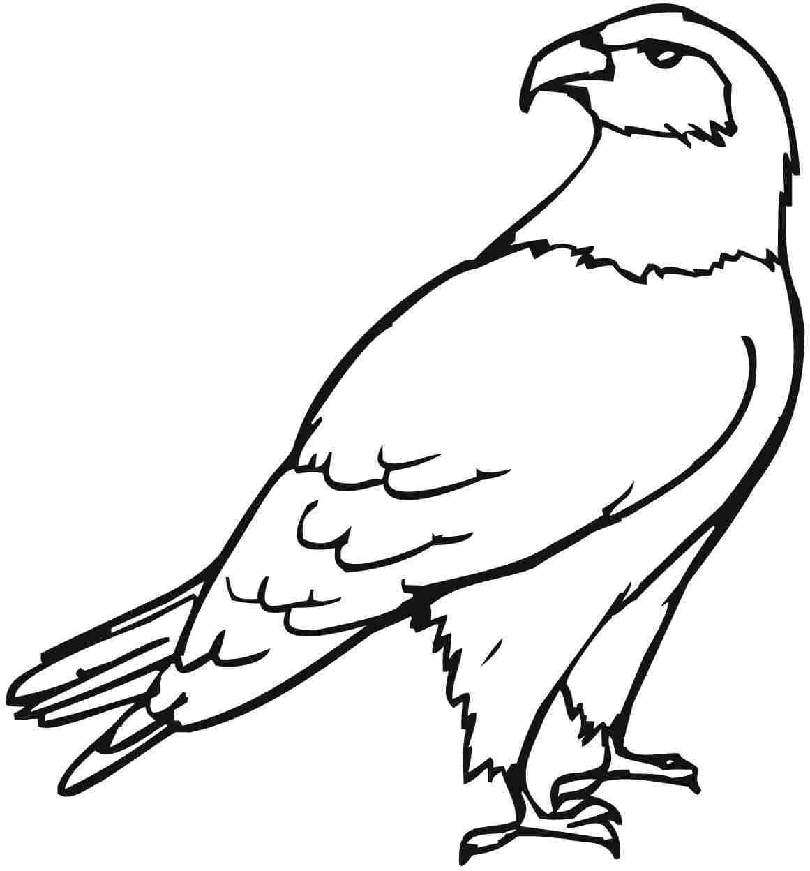 Printable Eagle Coloring Pages Eagle Coloring Pages Pinterest