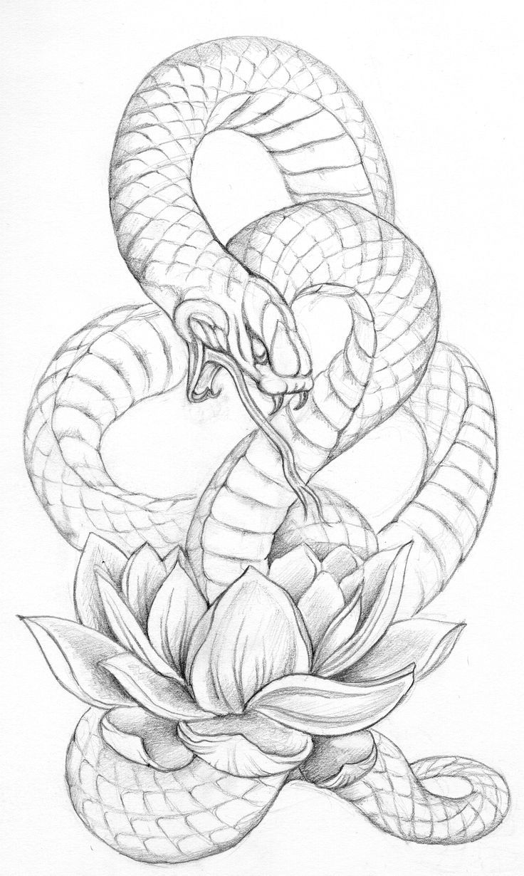 Image result for snake and lotus tattoo tattoo