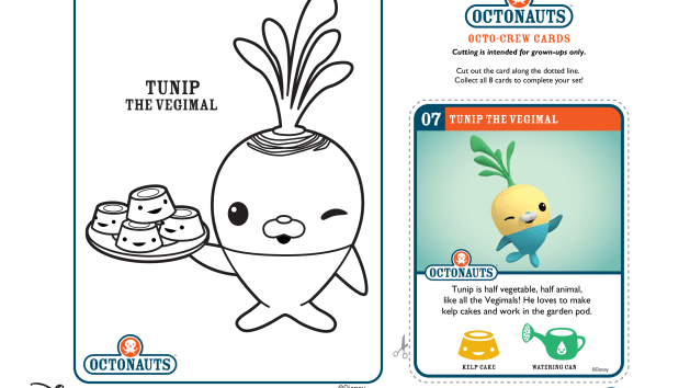 1000 images about for the boys octonauts on pinterest coloring