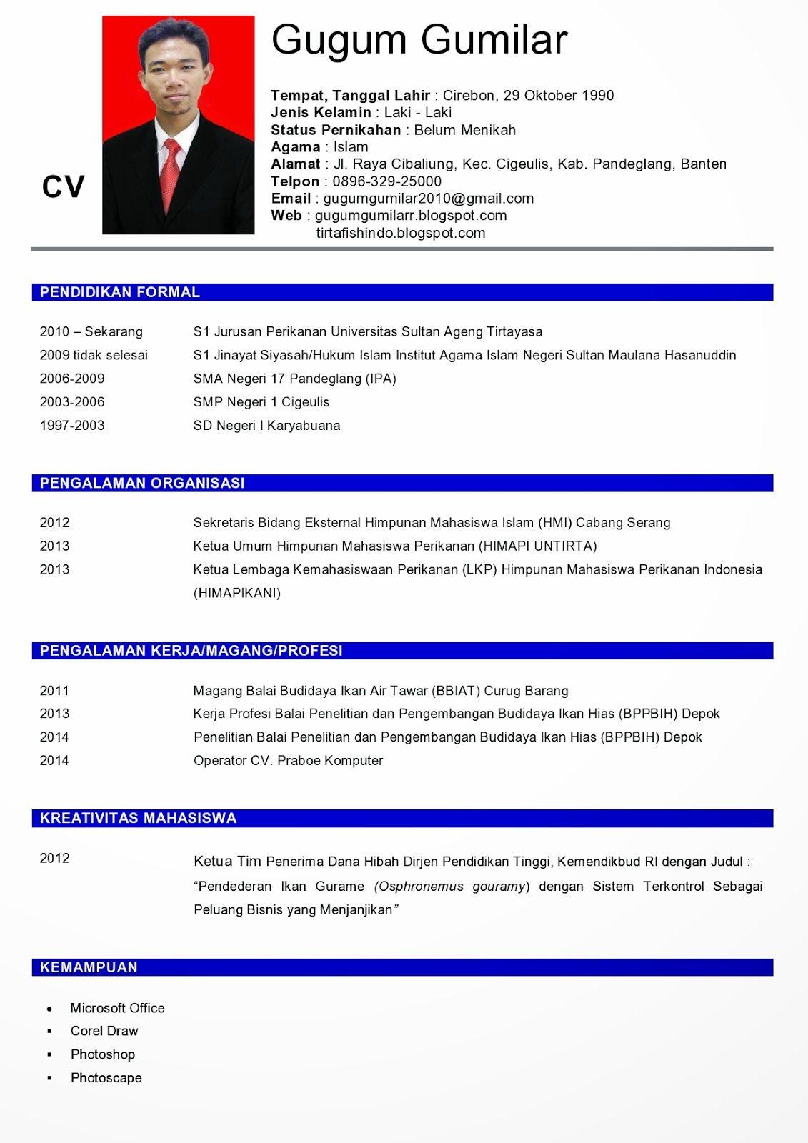 Cara Membuat Riwayat Hidup CV ( Curriculum Vitae ) DIAN