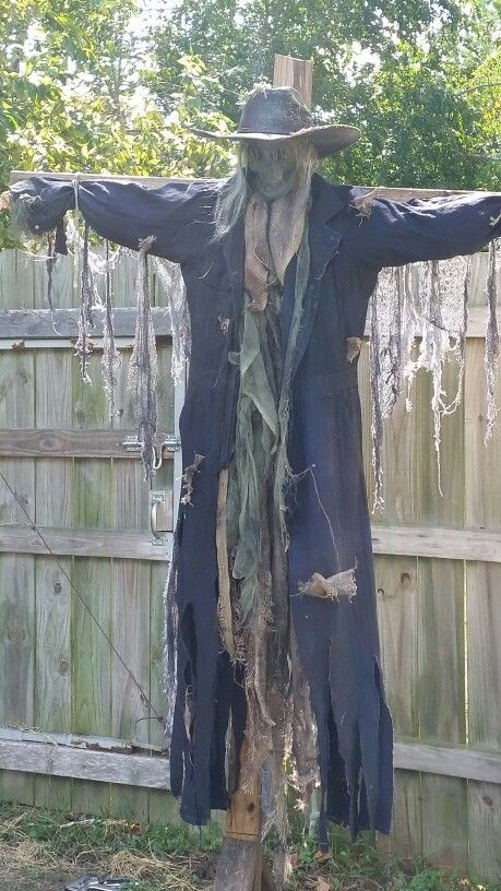 Scarecrow I made for halloween, jeepers creepers!