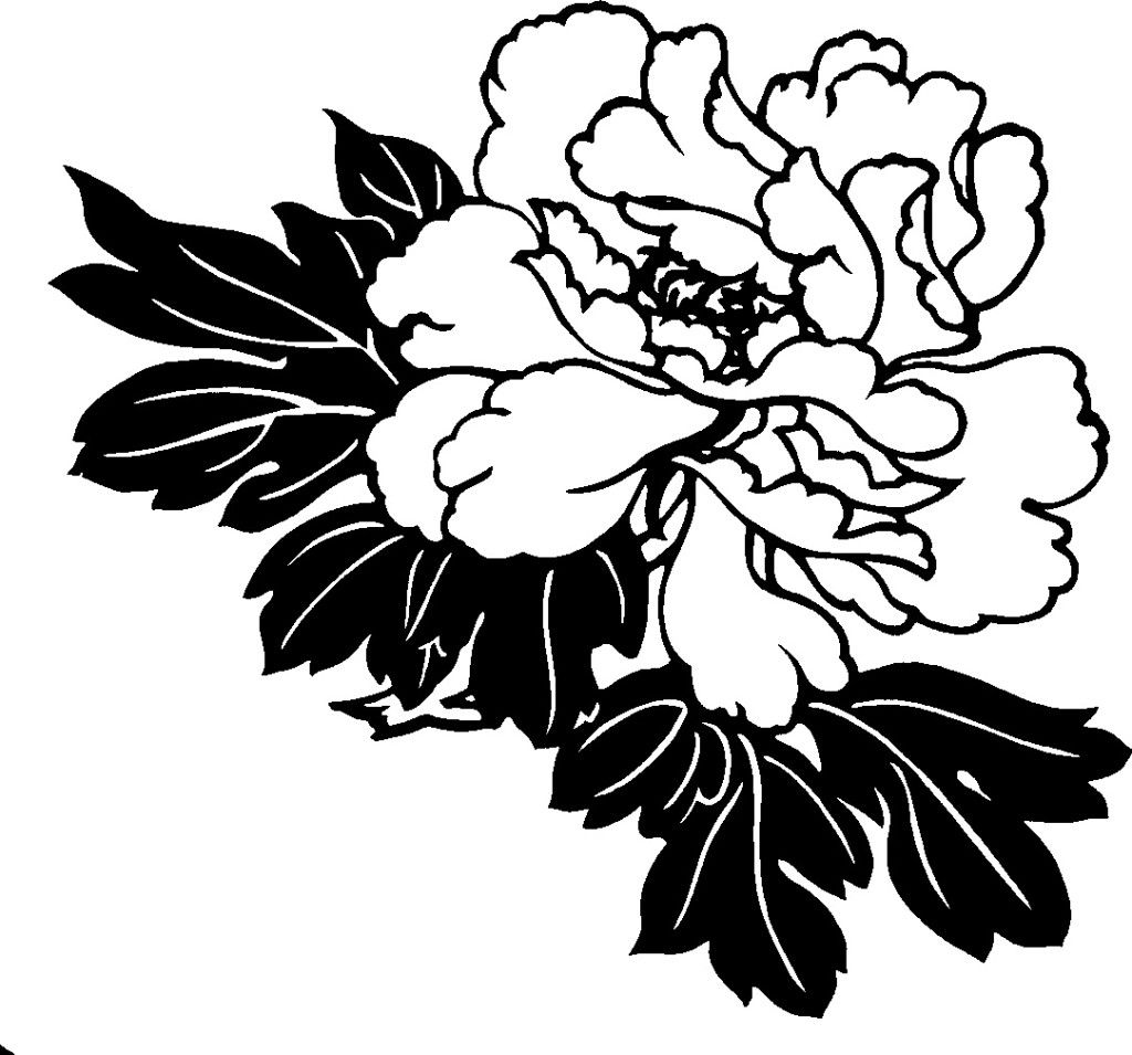 Hawaiian Flower Clipart Black And White