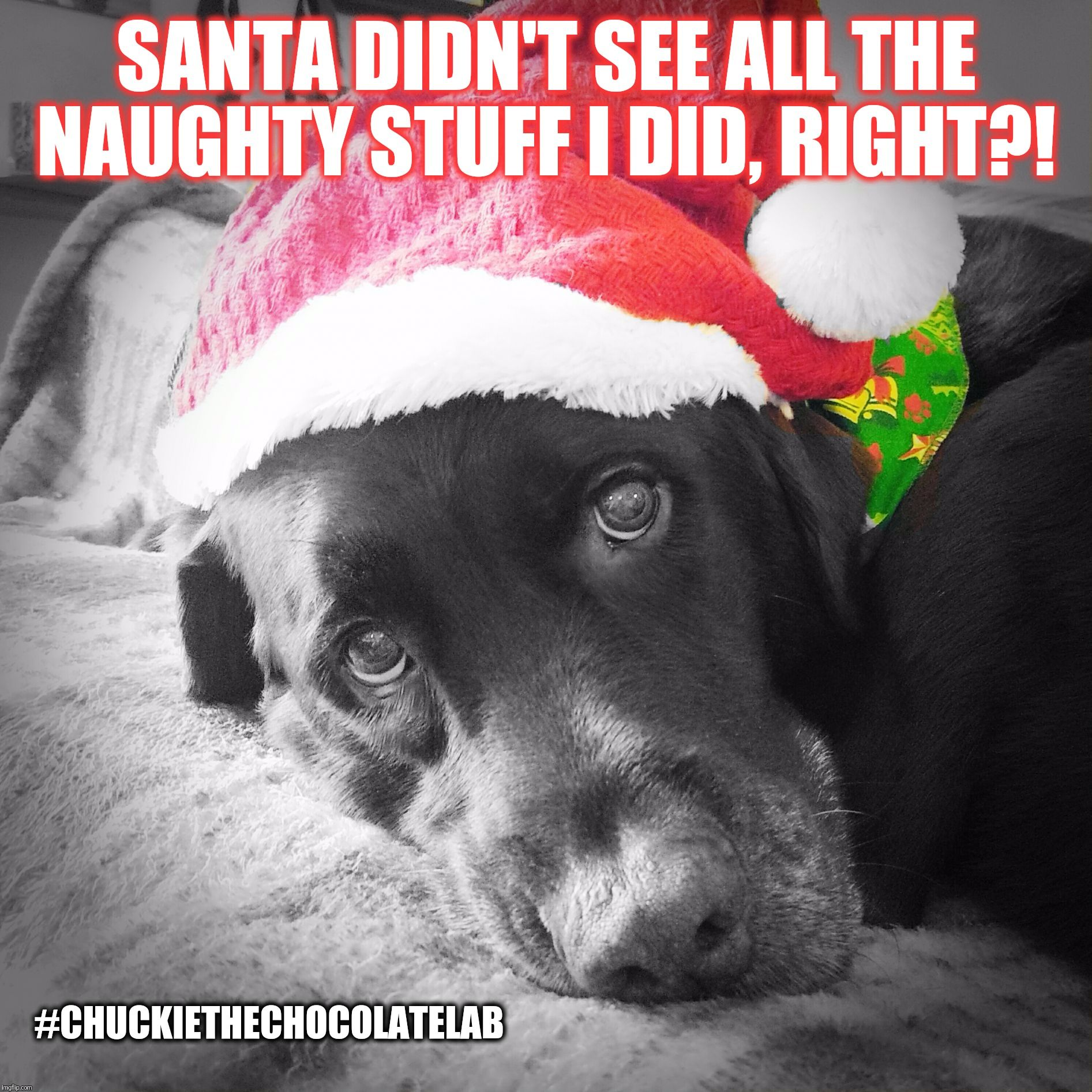 Santa didn't see all the naughty stuff I did, right