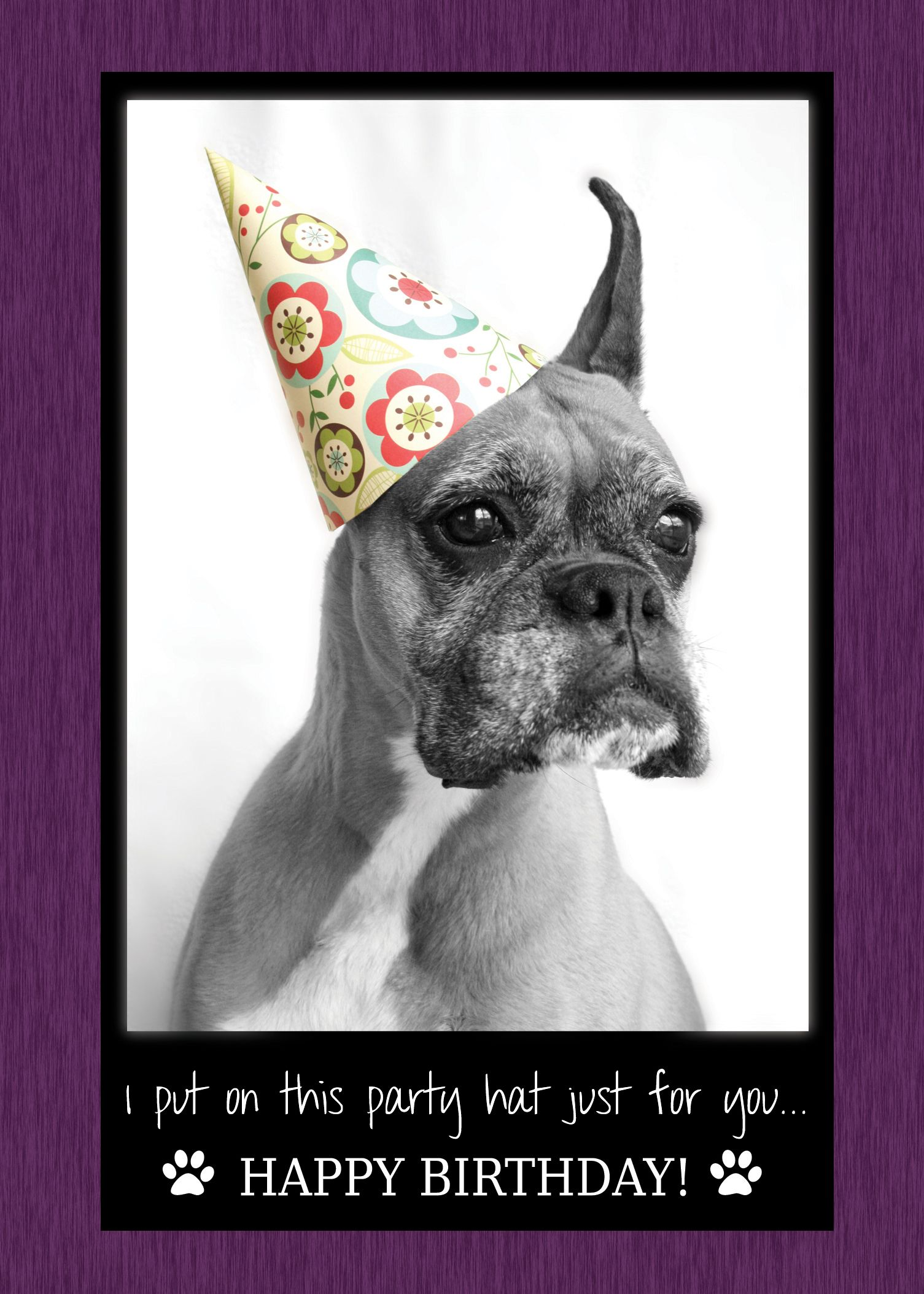 I put on this party hat just for you... Happy Birthday