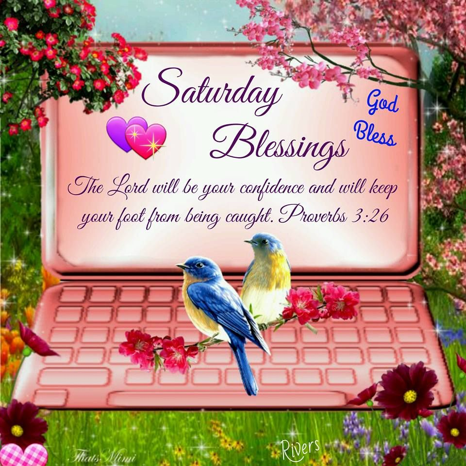 Good Morning, Happy Saturday. I pray that you have a safe