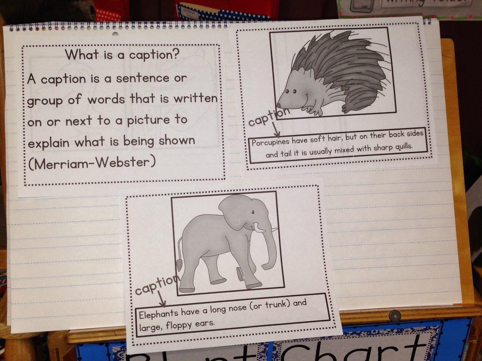 Writing Captions Chalk Talk A Kindergarten Blog